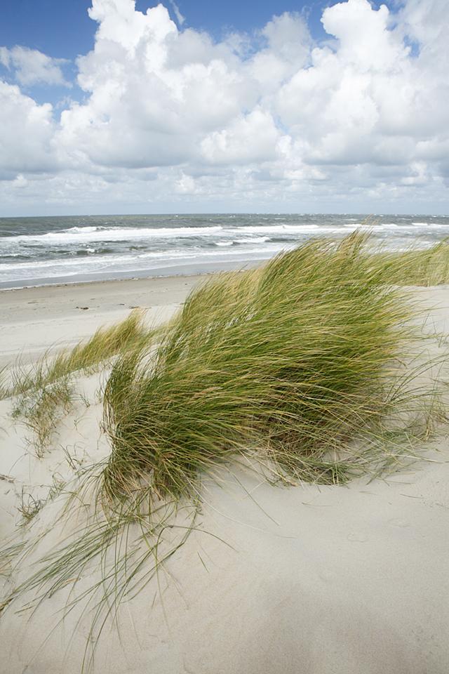 Landschaftsfotografie auf Texel. Dieses Bild entstand sogar ohne Stativ, da es viel zu windig war, um ein Stativ aufzubauen.