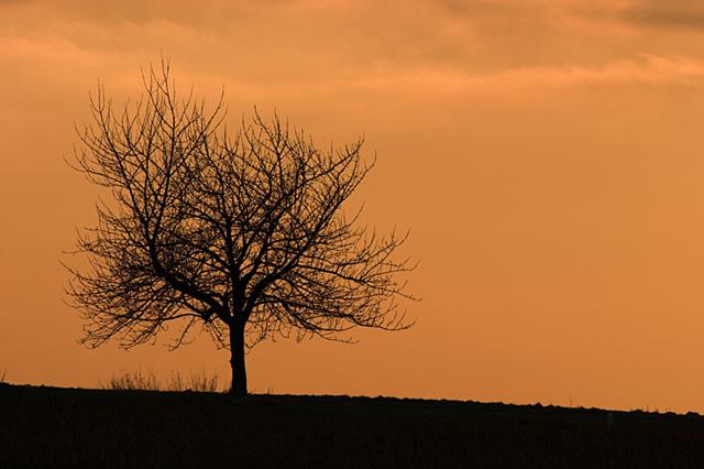 Landschaftsfotografie muss nicht immer viel Landschaft zeigen...