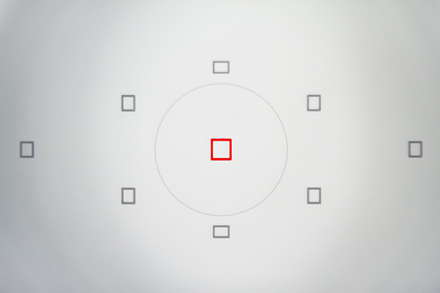 Autofokus-Felder im DSLR Sucher