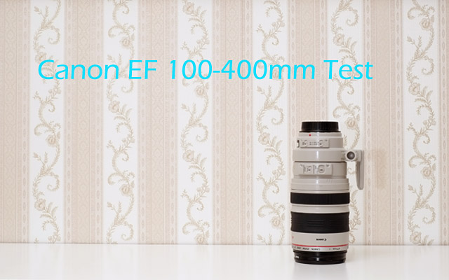 Test des Canon EF 100-400mm L IS USM Review