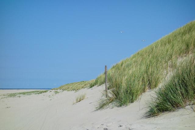 Strand Foto Dünen mit Sony RX 100